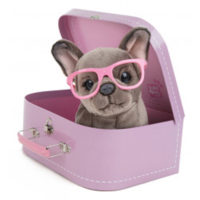 Studio Pets -pehmo matkalaukussa. Lajitelma, Pieni – Studio Pets