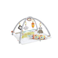 Perfect Sense Deluxe Gym – Fisher-Price