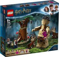Kielletty metsä: Pimennon kohtaaminen – LEGO Harry Potter