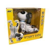 Stunt Dog temppukoira