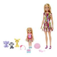 Barbie The Lost Birthday Barbie & Chelsea Story Set – Barbie